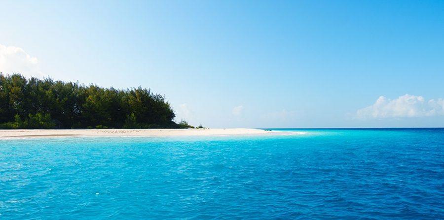 island - Mnemba Atoll - scubafish
